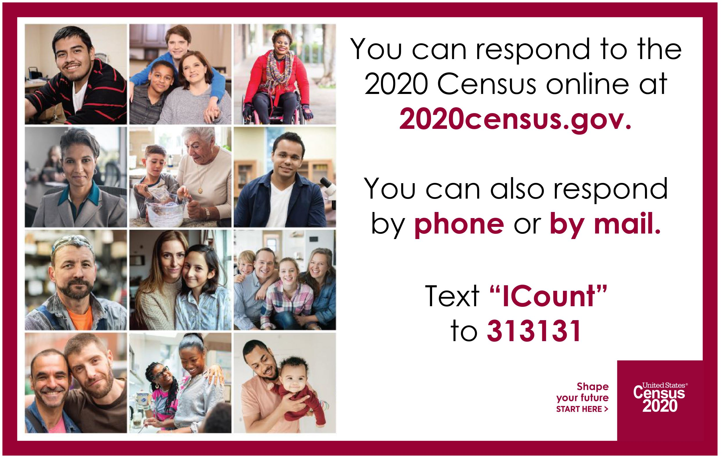Census 2020_I Count Text 313131